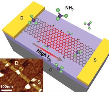 Dibujo20090507_graphene_nanoribbon_FET_transistor
