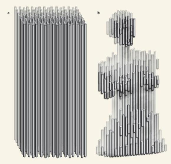 Dibujo20090521_DNA_blocks_like_wood_carving