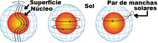 Dibujo20090901_solar_activity_magnetic_fields_poloidal_left_toroidal_center_sunspots_formation_right