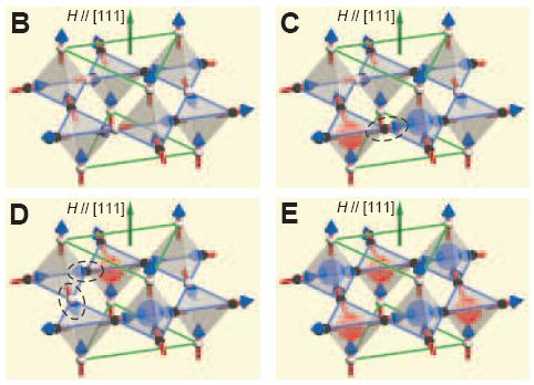 Dibujo20090903_spin_ice_and_both_poles_monopoles_in_figure_E