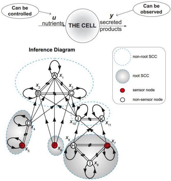 Dibujo20130131 inference diagram - example metabolic network