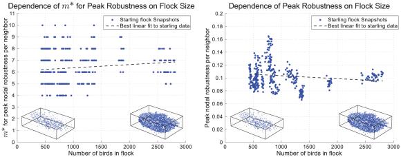Dibujo20130214 dependence of optimum value for peak robustness on flock size