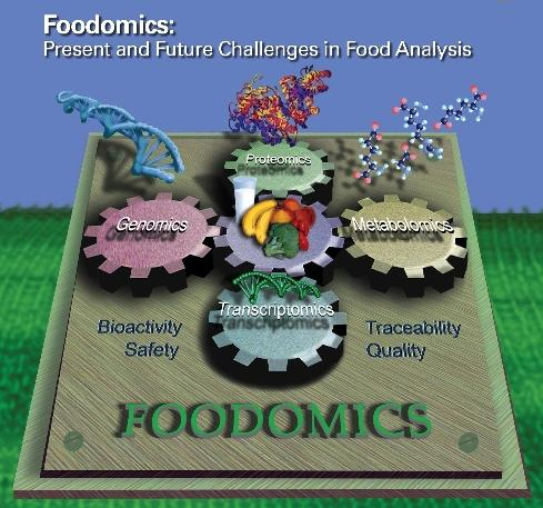 Dibujo20130401 foodomics - present and future - cover journal analytical chemistry - acs pub