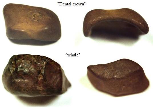 Dibujo20130504 tunguska rocks - dental crown - whale