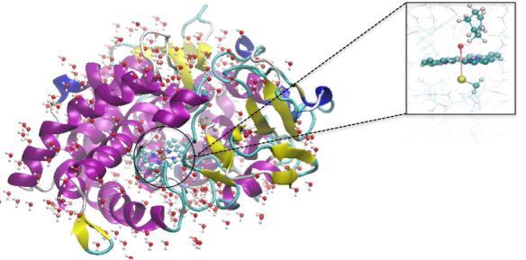 Dibujo20131009 Quantum mechanics - molecular mechanics calculation of an enzymatic reaction