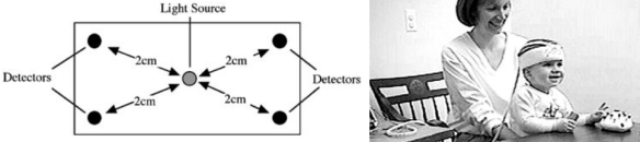 Dibujo20131014 schematic diagram NIRS probe - experimental setup - Natalie Portman - 2002